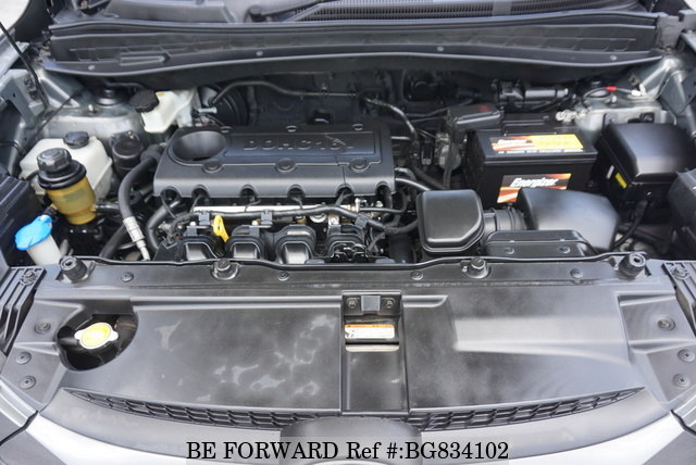 2010 HYUNDAI TUCSON engine